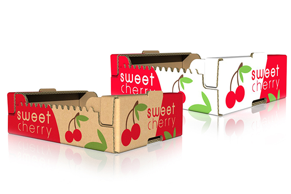 DS Smith Hungary fruits packaging_